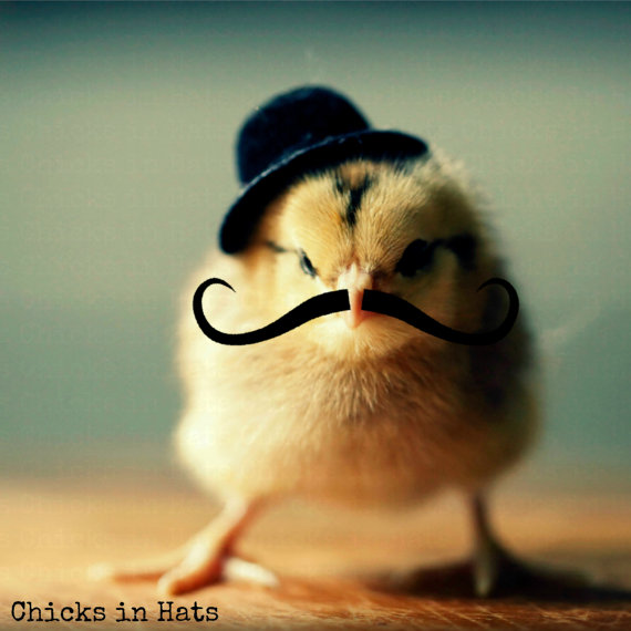 Greeting Card Chick in Black Derby Hat With Mustache   by   chicksinhats
